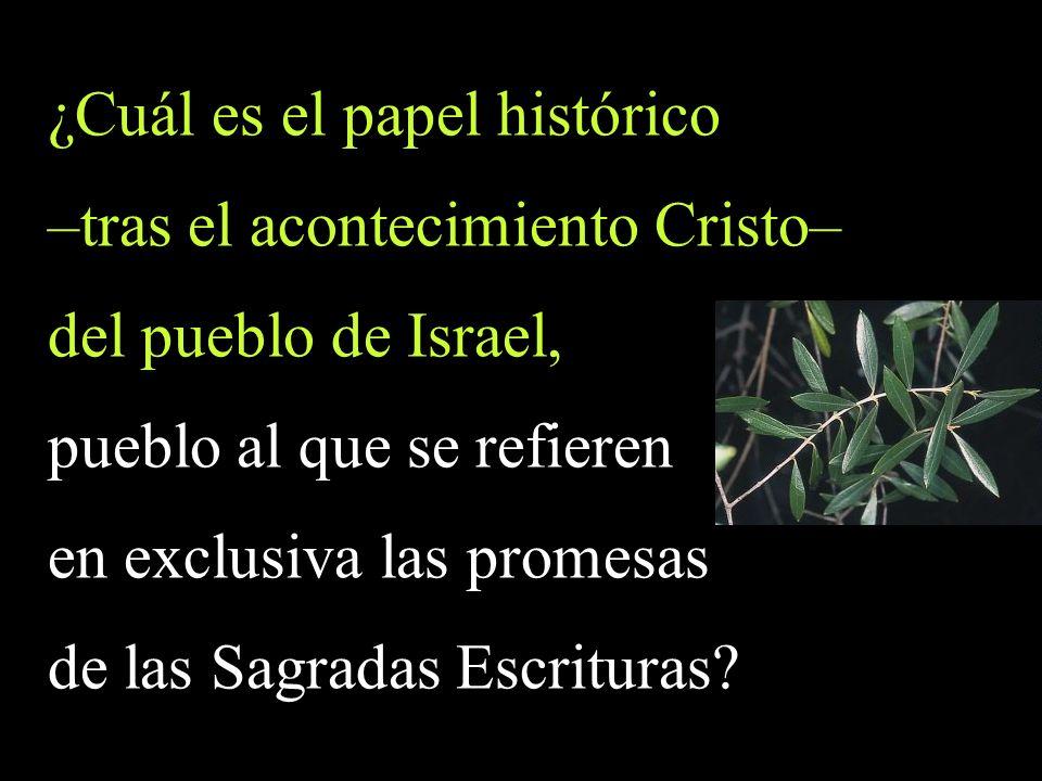 ¿Cuál es el papel histórico –tras el acontecimiento Cristo– del pueblo de Israel, pueblo al que se refieren en exclusiva las promesas de las Sagradas