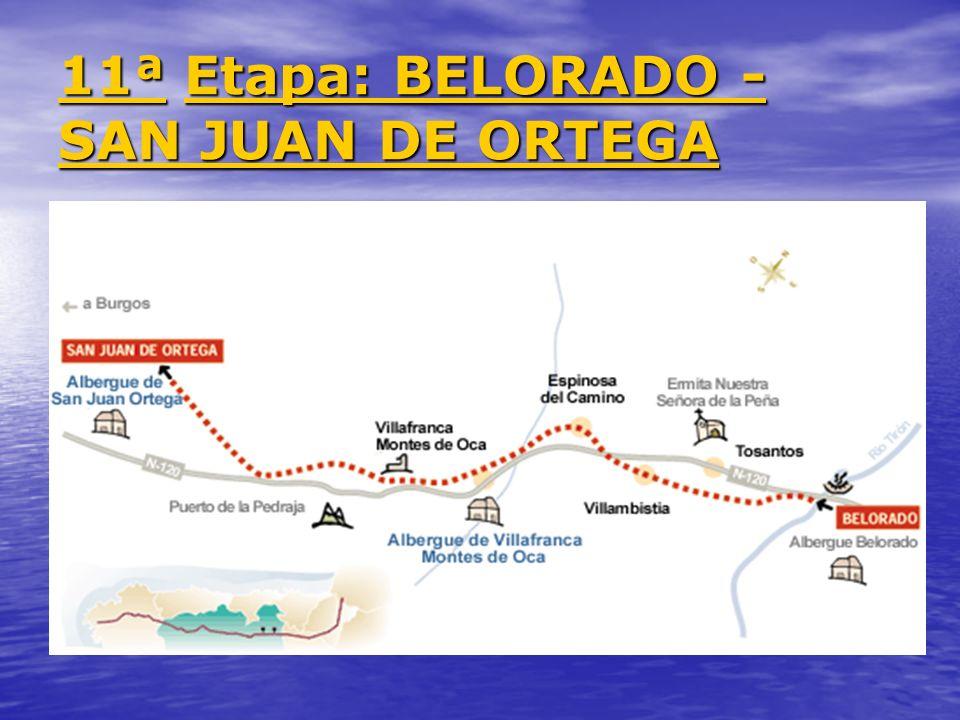 11ª 11ª Etapa: BELORADO - SAN JUAN DE ORTEGA Etapa: BELORADO - SAN JUAN DE ORTEGA 11ª Etapa: BELORADO - SAN JUAN DE ORTEGA