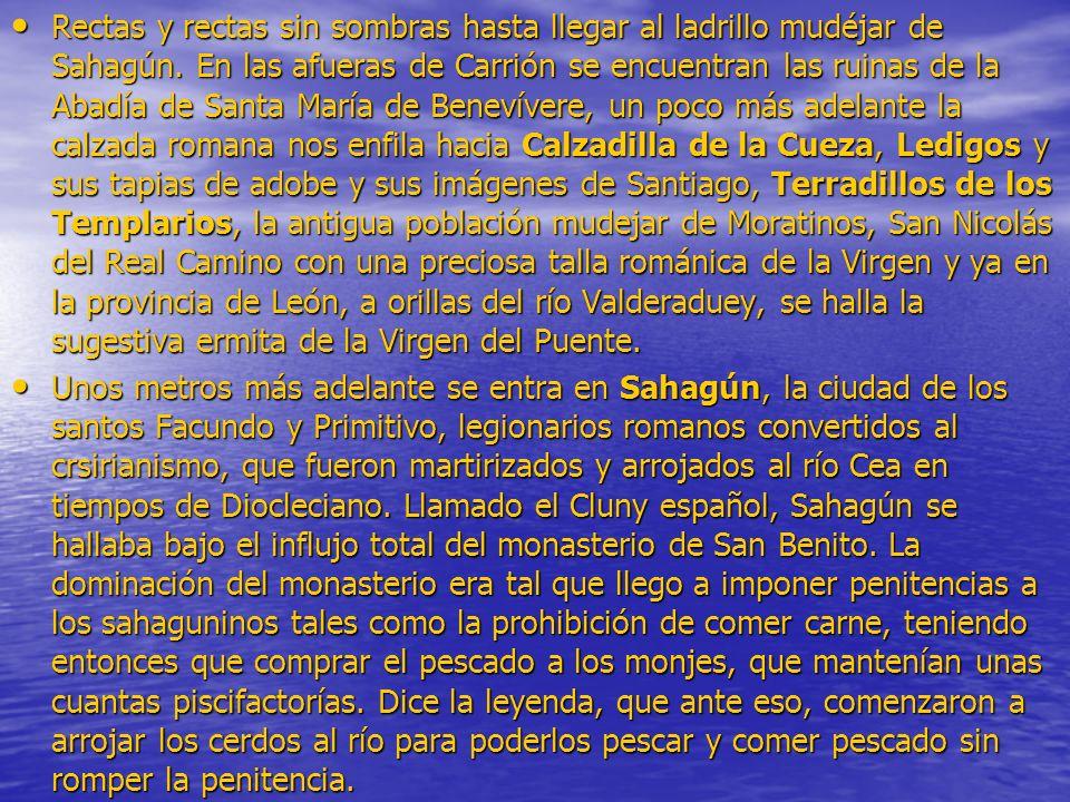 Rectas y rectas sin sombras hasta llegar al ladrillo mudéjar de Sahagún. En las afueras de Carrión se encuentran las ruinas de la Abadía de Santa Marí