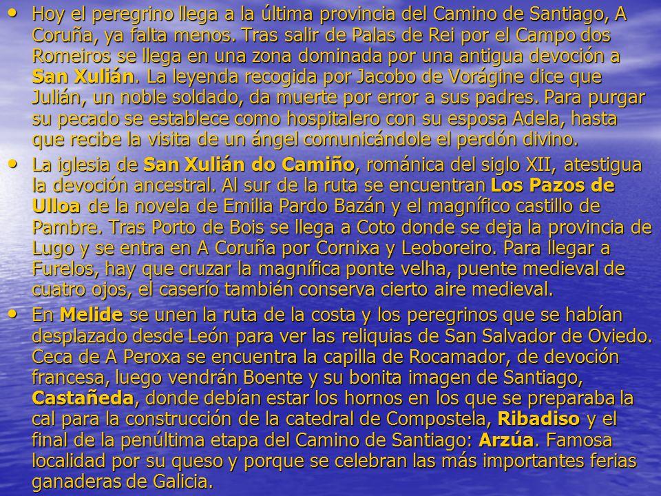 Hoy el peregrino llega a la última provincia del Camino de Santiago, A Coruña, ya falta menos. Tras salir de Palas de Rei por el Campo dos Romeiros se
