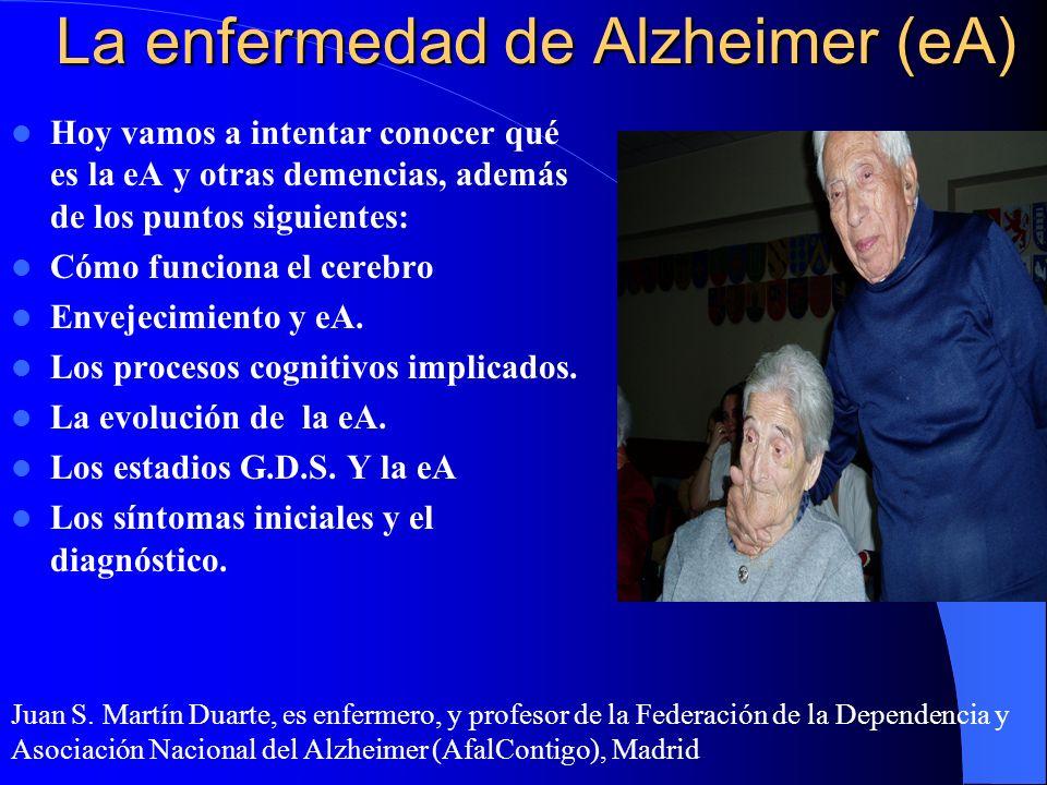 La enfermedad de Alzheimer (eA) Hoy vamos a intentar conocer qué es la eA y otras demencias, además de los puntos siguientes: Cómo funciona el cerebro Envejecimiento y eA.