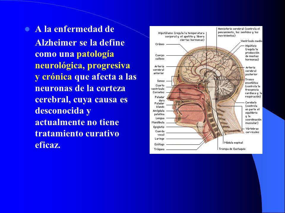 A la enfermedad de Alzheimer se la define como una patología neurológica, progresiva y crónica que afecta a las neuronas de la corteza cerebral, cuya