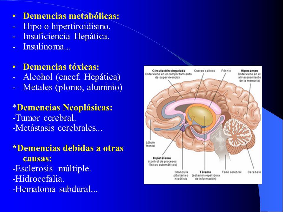 Demencias metabólicas: -Hipo o hipertiroidismo. -Insuficiencia Hepática. -Insulinoma... Demencias tóxicas: -Alcohol (encef. Hepática) -Metales (plomo,