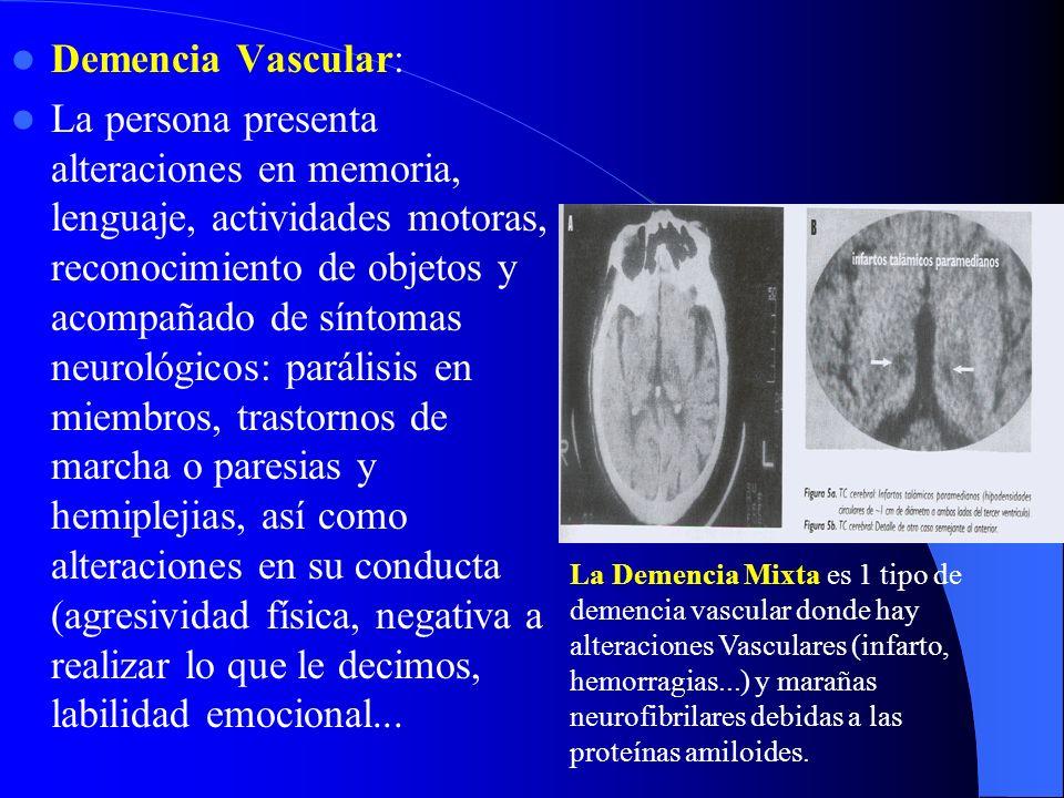 Demencia Vascular: La persona presenta alteraciones en memoria, lenguaje, actividades motoras, reconocimiento de objetos y acompañado de síntomas neur