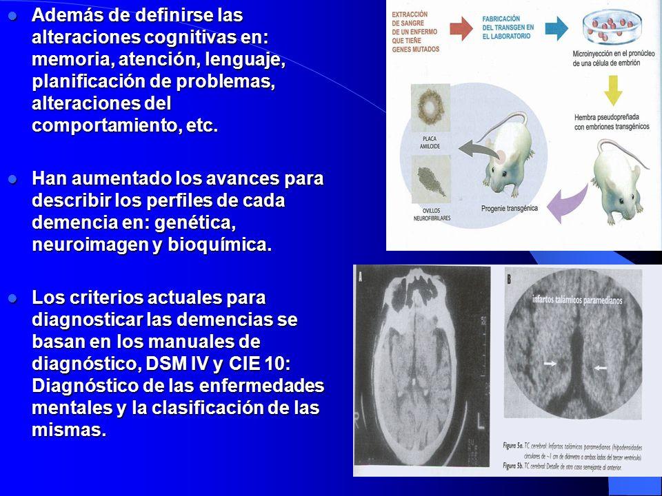 Además de definirse las alteraciones cognitivas en: memoria, atención, lenguaje, planificación de problemas, alteraciones del comportamiento, etc. Ade