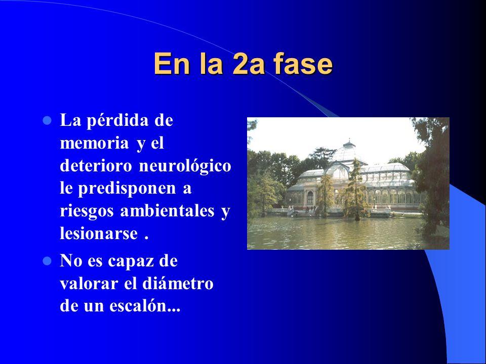En la 2a fase La pérdida de memoria y el deterioro neurológico le predisponen a riesgos ambientales y lesionarse. No es capaz de valorar el diámetro d