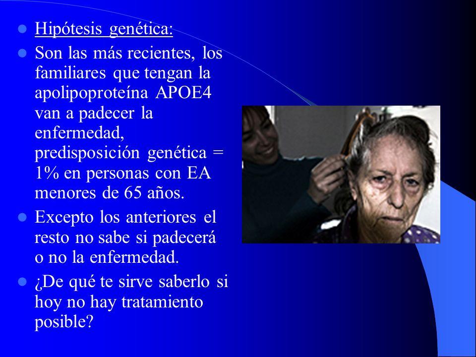 Hipótesis genética: Son las más recientes, los familiares que tengan la apolipoproteína APOE4 van a padecer la enfermedad, predisposición genética = 1% en personas con EA menores de 65 años.