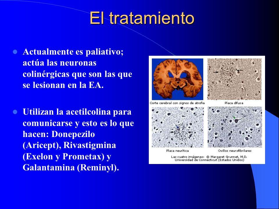 El tratamiento Actualmente es paliativo; actúa las neuronas colinérgicas que son las que se lesionan en la EA. Utilizan la acetilcolina para comunicar