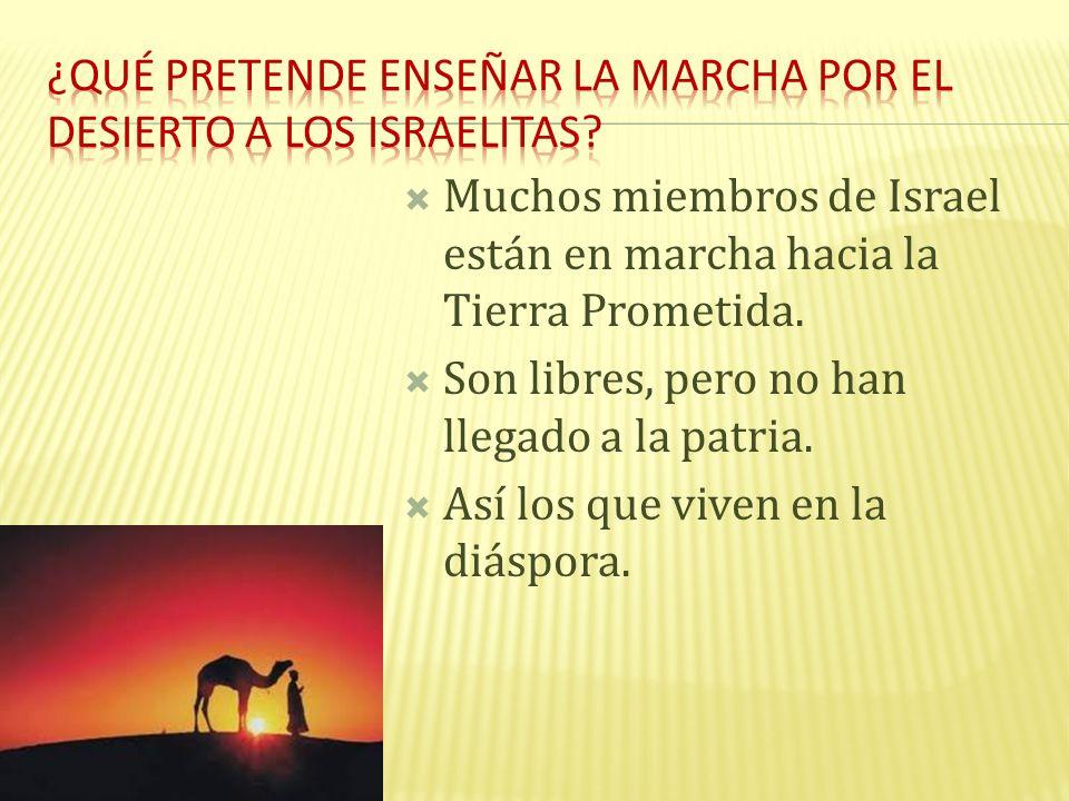 Muchos miembros de Israel están en marcha hacia la Tierra Prometida. Son libres, pero no han llegado a la patria. Así los que viven en la diáspora.
