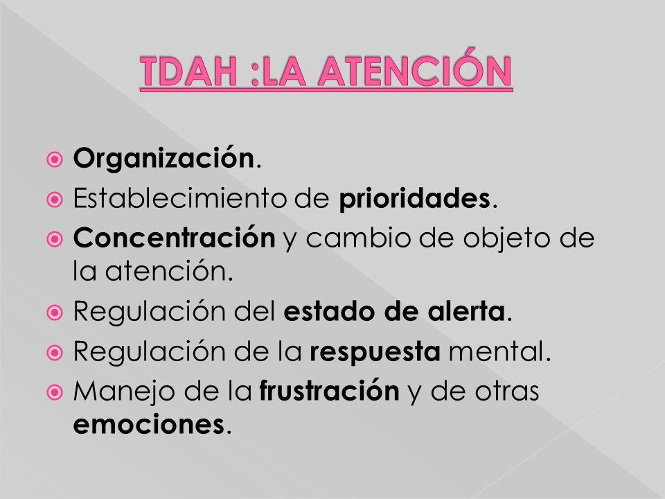 Organización. Establecimiento de prioridades. Concentración y cambio de objeto de la atención. Regulación del estado de alerta. Regulación de la respu