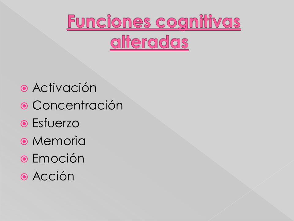 Activación Concentración Esfuerzo Memoria Emoción Acción