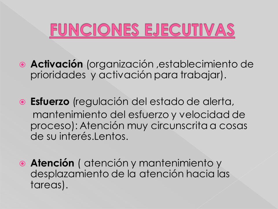 Activación (organización,establecimiento de prioridades y activación para trabajar). Esfuerzo (regulación del estado de alerta, mantenimiento del esfu