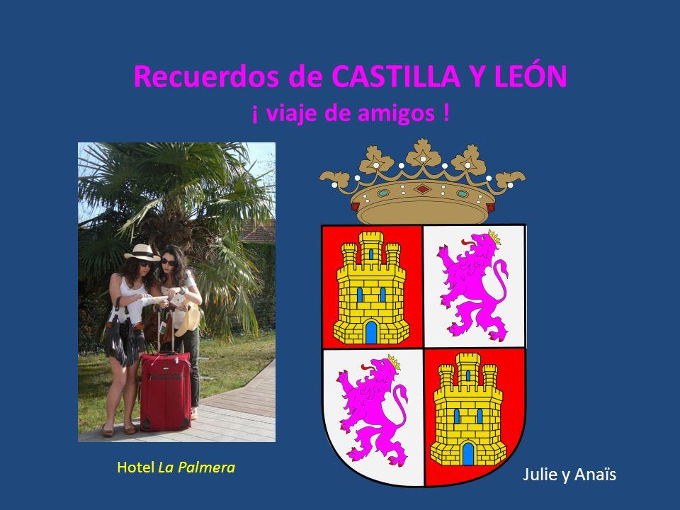 Recuerdos de CASTILLA Y LEÓN ¡ viaje de amigos ! Julie y Anaïs Hotel La Palmera