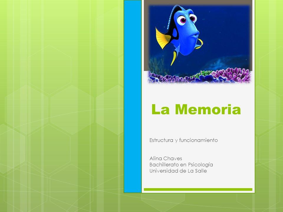La Memoria Estructura y funcionamiento Alina Chaves Bachillerato en Psicología Universidad de La Salle