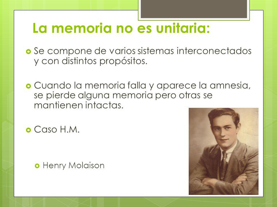 La memoria no es unitaria: Se compone de varios sistemas interconectados y con distintos propósitos. Cuando la memoria falla y aparece la amnesia, se
