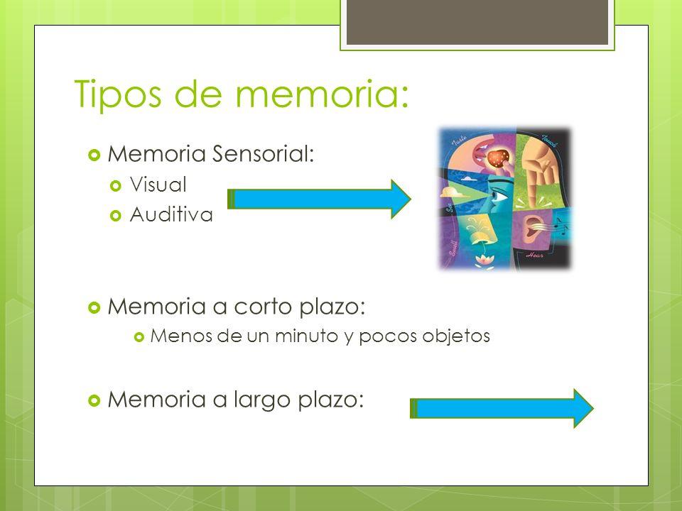 Tipos de memoria: Memoria Sensorial: Visual Auditiva Memoria a corto plazo: Menos de un minuto y pocos objetos Memoria a largo plazo: