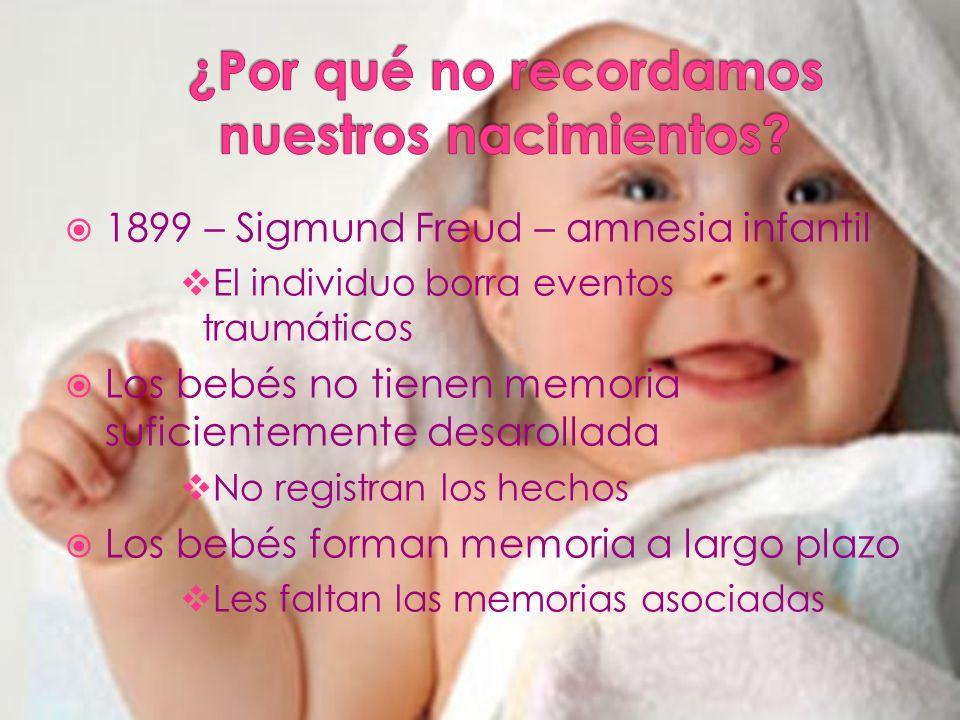 1899 – Sigmund Freud – amnesia infantil El individuo borra eventos traumáticos Los bebés no tienen memoria suficientemente desarollada No registran los hechos Los bebés forman memoria a largo plazo Les faltan las memorias asociadas
