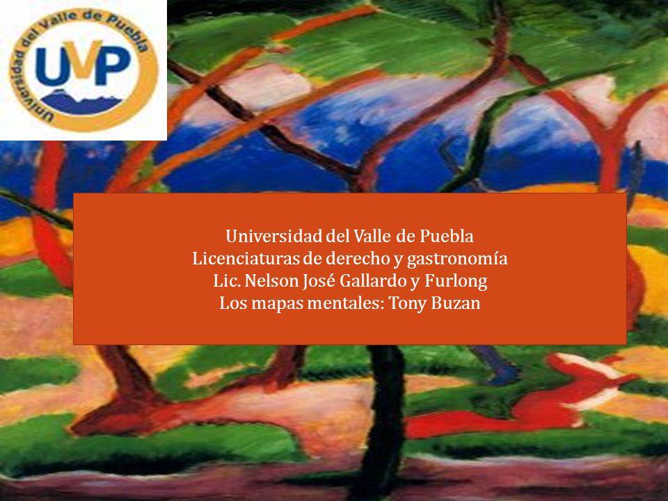 Universidad del Valle de Puebla Licenciaturas de derecho y gastronomía Lic. Nelson José Gallardo y Furlong Los mapas mentales: Tony Buzan