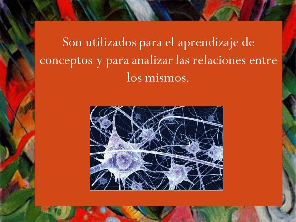 Guiri,,,, Al conectarse, las neuronas en el cerebro se enlazan unas con otras.