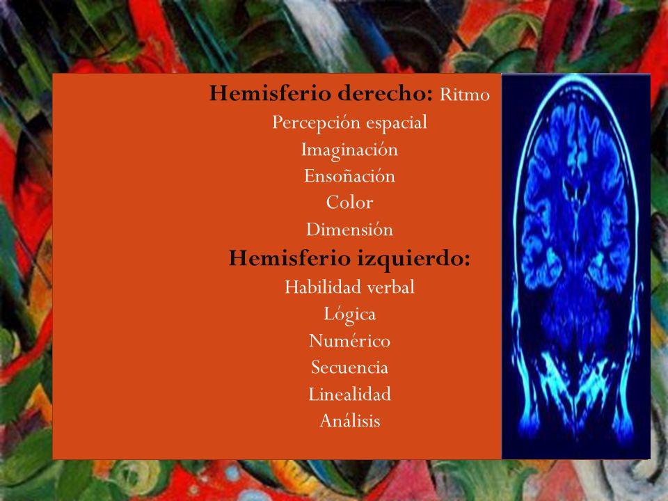 Guiri,,,, El cerebro humano trabaja respecto a la información de distintas maneras: 1.Recepción (refiere los sentidos) 2.Retención (recuerdos, memória) 3.Análisis (juicios evaluación) 4.Emisión (formas de comunicación) 5.Control (formas mentales y físicas)