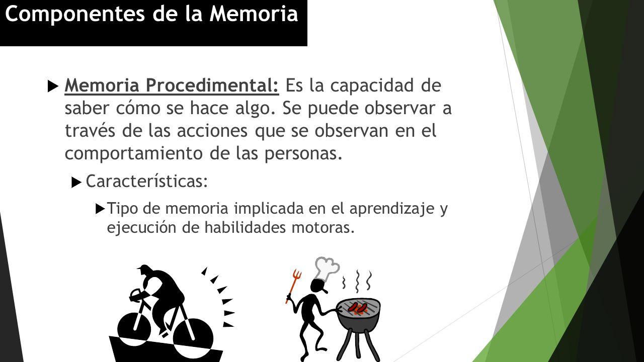 Memoria Procedimental: Es la capacidad de saber cómo se hace algo. Se puede observar a través de las acciones que se observan en el comportamiento de