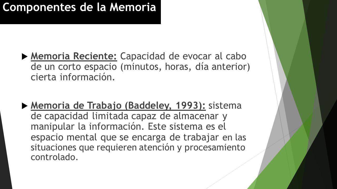 Memoria Reciente: Capacidad de evocar al cabo de un corto espacio (minutos, horas, día anterior) cierta información. Memoria de Trabajo (Baddeley, 199