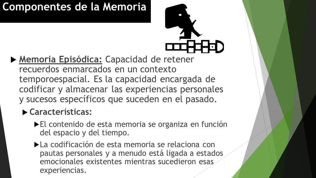 Memoria Episódica: Capacidad de retener recuerdos enmarcados en un contexto temporoespacial. Es la capacidad encargada de codificar y almacenar las ex