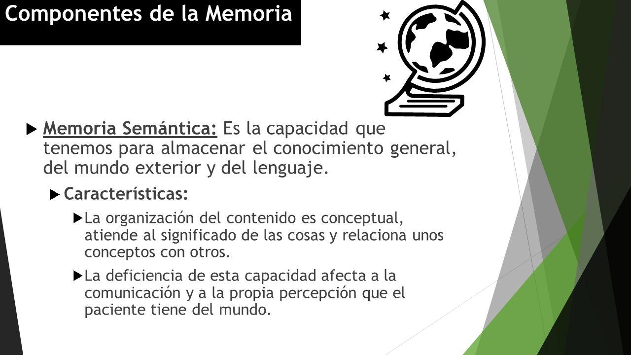Memoria Semántica: Es la capacidad que tenemos para almacenar el conocimiento general, del mundo exterior y del lenguaje. Características: La organiza