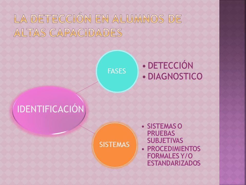 FASES SISTEMAS IDENTIFICACIÓN