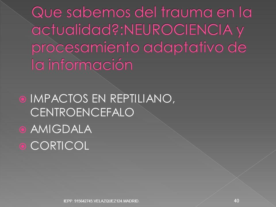 IMPACTOS EN REPTILIANO, CENTROENCEFALO AMIGDALA CORTICOL 40 IEPP. 915642745.VELAZQUEZ124.MADRID.