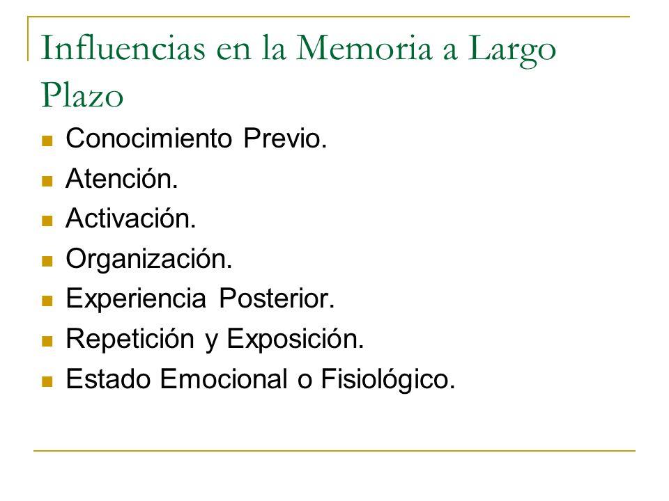 Influencias en la Memoria a Largo Plazo Conocimiento Previo. Atención. Activación. Organización. Experiencia Posterior. Repetición y Exposición. Estad