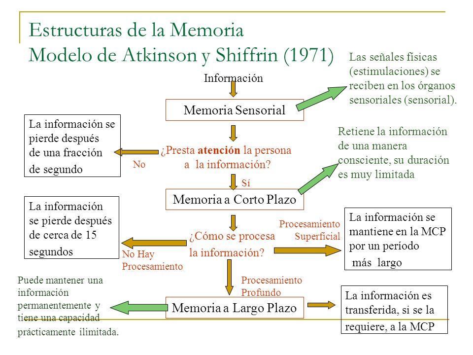 Estructuras de la Memoria Modelo de Atkinson y Shiffrin (1971) Memoria Sensorial Memoria a Corto Plazo Memoria a Largo Plazo Información ¿Cómo se proc