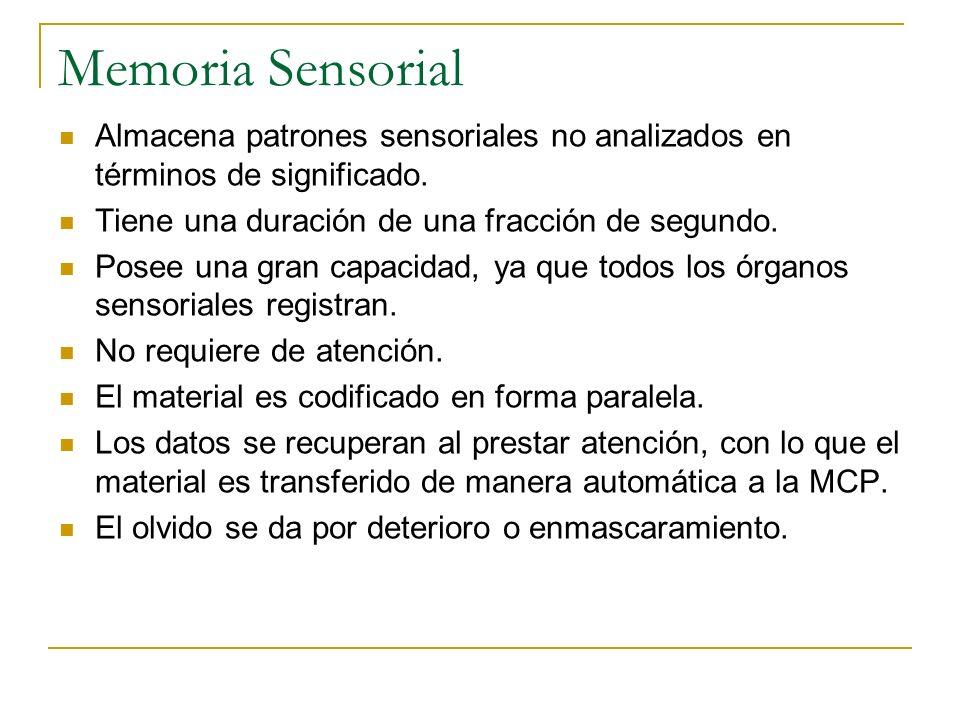 Memoria Sensorial Almacena patrones sensoriales no analizados en términos de significado. Tiene una duración de una fracción de segundo. Posee una gra