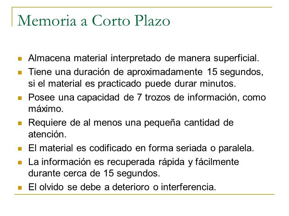 Memoria a Largo Plazo Almacena material interpretado de manera significativa.