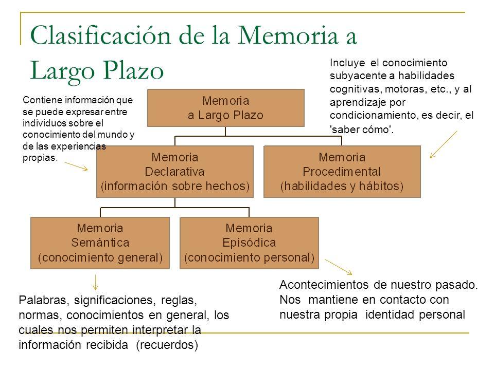 Clasificación de la Memoria a Largo Plazo Acontecimientos de nuestro pasado. Nos mantiene en contacto con nuestra propia identidad personal Palabras,