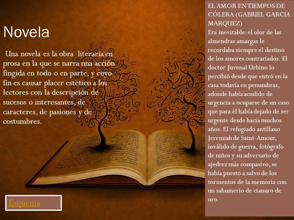 Novela Una novela es la obra literaria en prosa en la que se narra una acción fingida en todo o en parte, y cuyo fin es causar placer estético a los l
