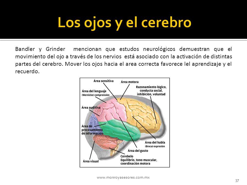 www.monroyasesores.com.mx 37 Bandler y Grinder mencionan que estudos neurológicos demuestran que el movimiento del ojo a través de los nervios está as