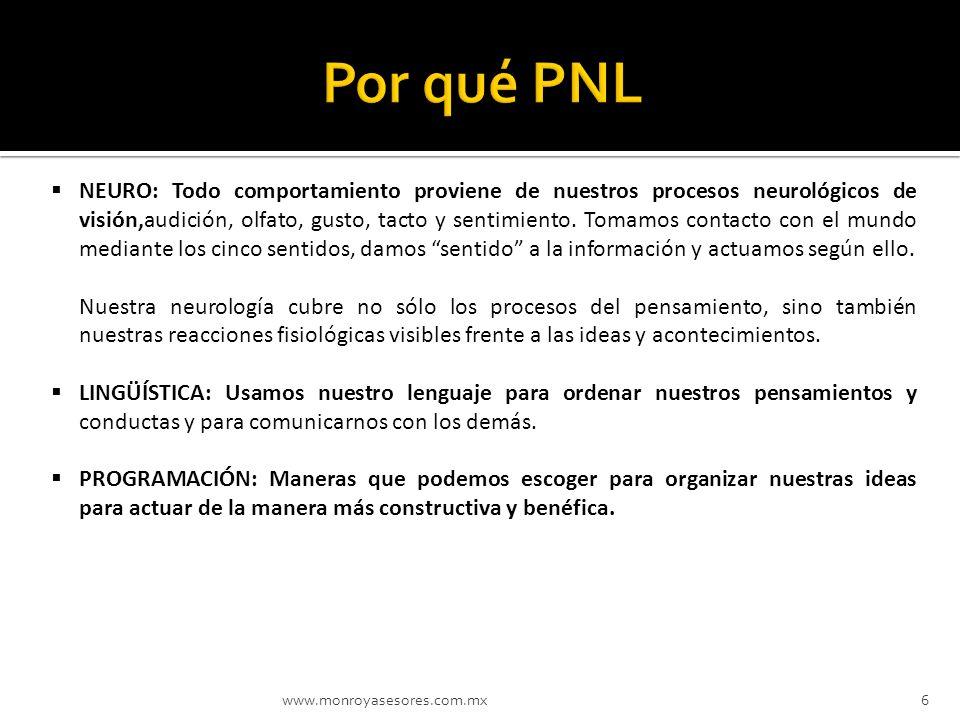 www.monroyasesores.com.mx6 NEURO: Todo comportamiento proviene de nuestros procesos neurológicos de visión,audición, olfato, gusto, tacto y sentimient