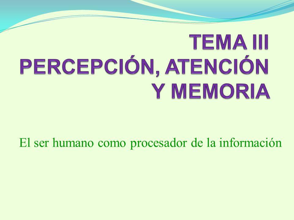 El ser humano como procesador de la información