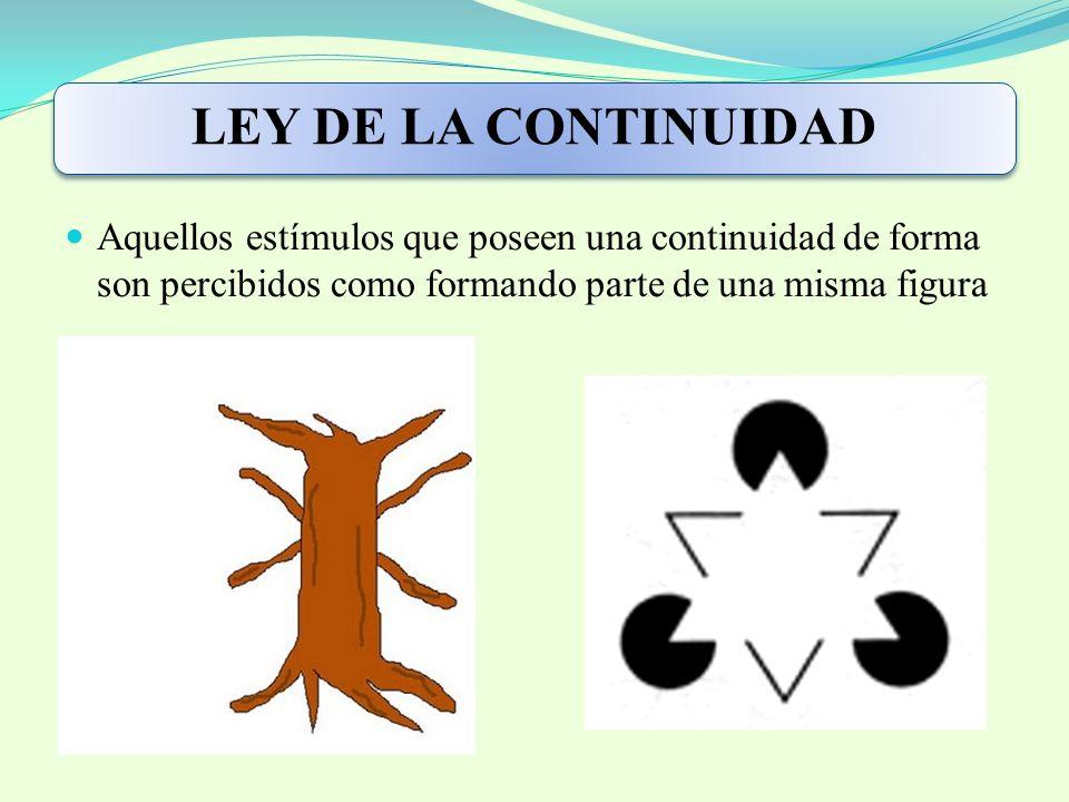 LEY DE LA CONTINUIDAD Aquellos estímulos que poseen una continuidad de forma son percibidos como formando parte de una misma figura