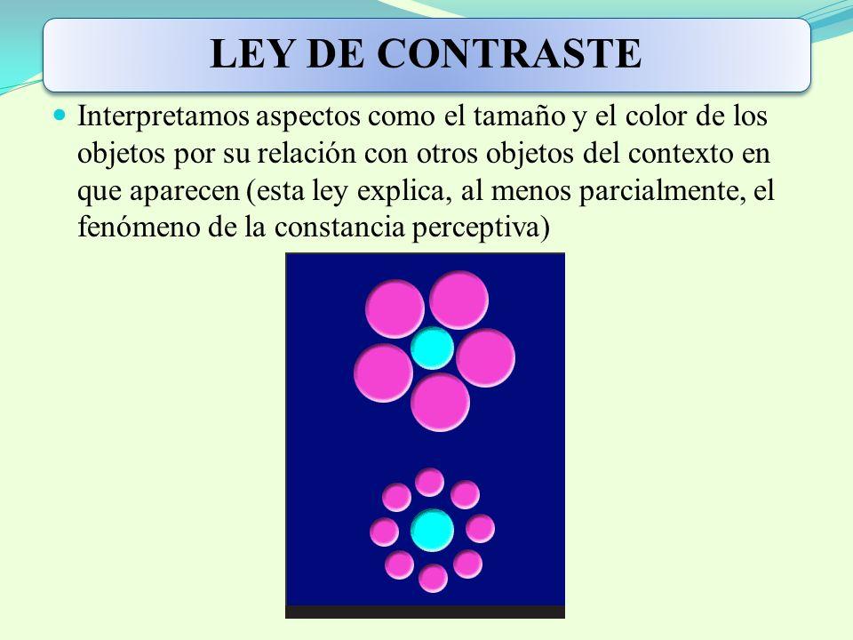 LEY DE CONTRASTE Interpretamos aspectos como el tamaño y el color de los objetos por su relación con otros objetos del contexto en que aparecen (esta ley explica, al menos parcialmente, el fenómeno de la constancia perceptiva)