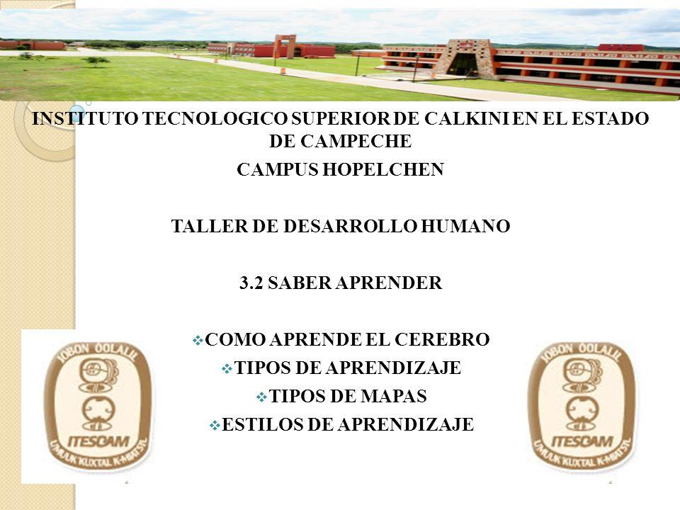INSTITUTO TECNOLOGICO SUPERIOR DE CALKINI EN EL ESTADO DE CAMPECHE CAMPUS HOPELCHEN TALLER DE DESARROLLO HUMANO 3.2 SABER APRENDER COMO APRENDE EL CER