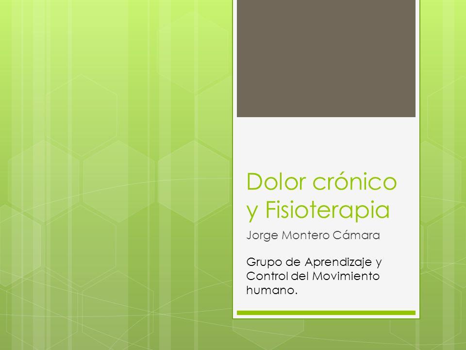 Dolor crónico y Fisioterapia Jorge Montero Cámara Grupo de Aprendizaje y Control del Movimiento humano.