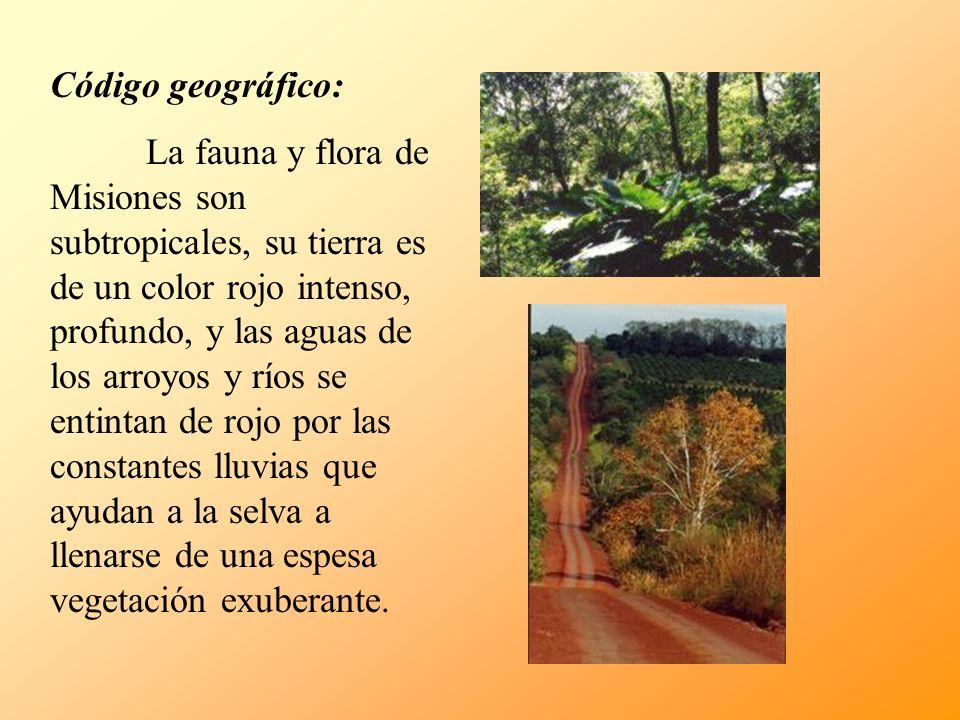 Código geográfico: La fauna y flora de Misiones son subtropicales, su tierra es de un color rojo intenso, profundo, y las aguas de los arroyos y ríos se entintan de rojo por las constantes lluvias que ayudan a la selva a llenarse de una espesa vegetación exuberante.