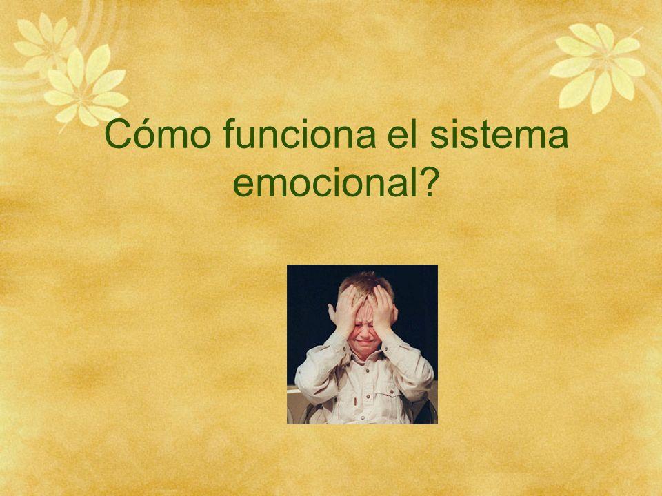 Cómo funciona el sistema emocional?