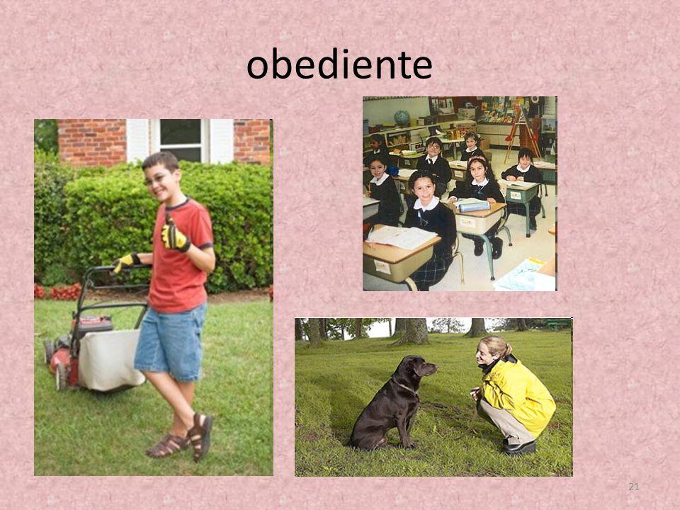 obediente 21