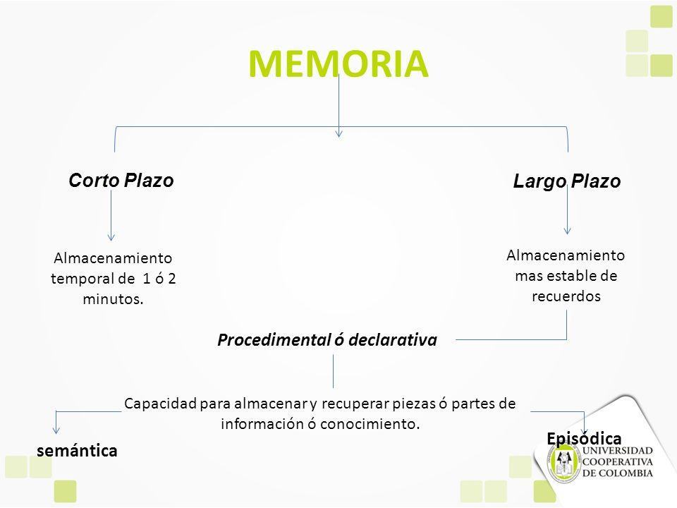 MEMORIA Corto Plazo Almacenamiento temporal de 1 ó 2 minutos. Largo Plazo Almacenamiento mas estable de recuerdos Procedimental ó declarativa Capacida