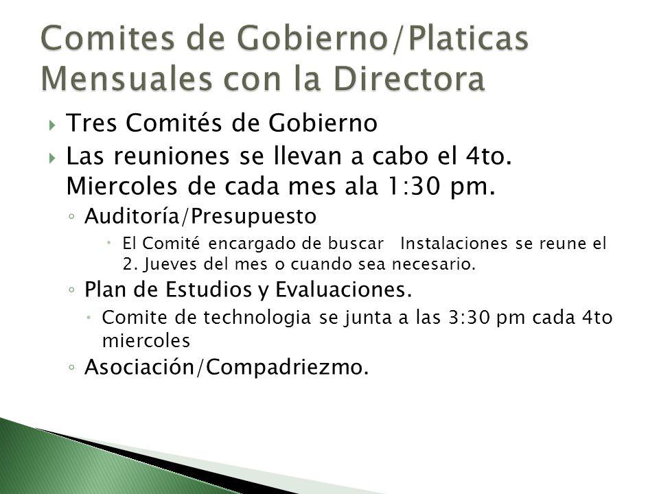 Tres Comités de Gobierno Las reuniones se llevan a cabo el 4to. Miercoles de cada mes ala 1:30 pm. Auditoría/Presupuesto El Comité encargado de buscar