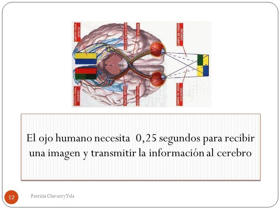 El ojo humano necesita 0,25 segundos para recibir una imagen y transmitir la información al cerebro 12 Patricia Chávarry Ysla