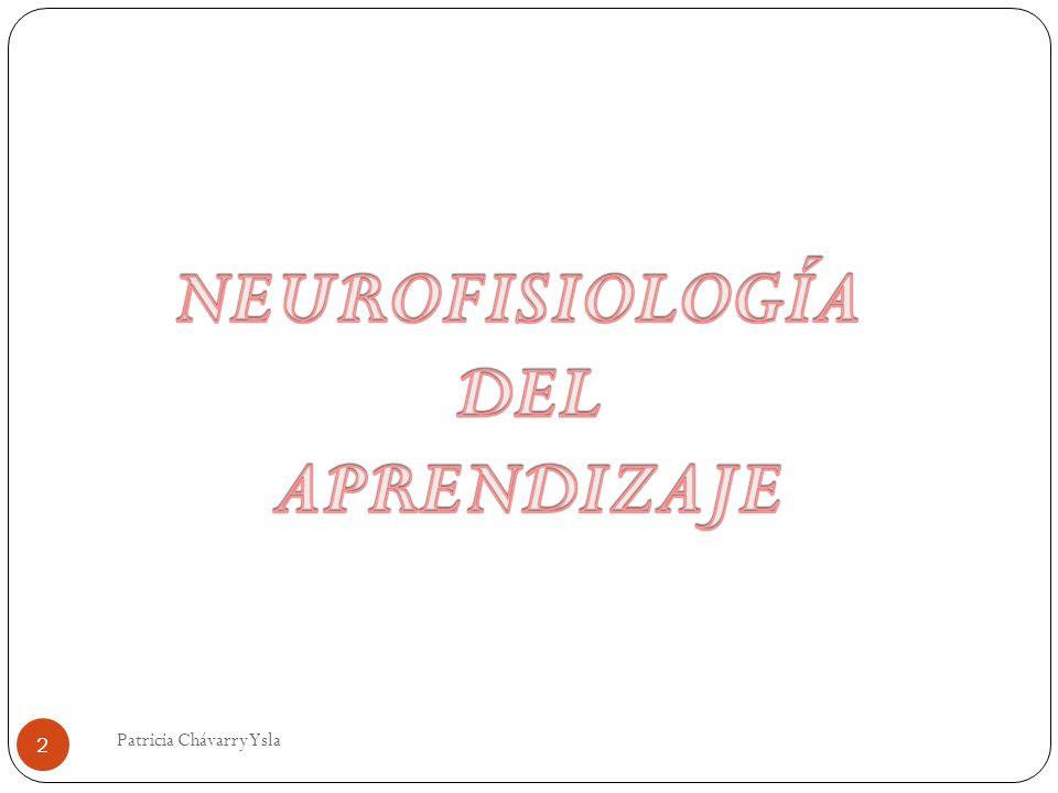 Neuro Transmisores Adrenalina + serotonina o triptófano + tiroxina + Acetilcolina HACEN POSIBLE LOS PROCESOS DE APRENDIZAJE Y MEMORIA 23 Patricia Chávarry Ysla